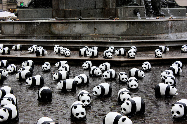 1600 Pandas+ World Tour